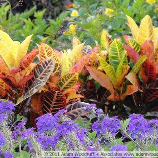 Croton Landscaping Ideas Photos Houzz