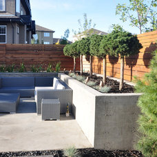 Modern Landscape by Pacific Ridge Landscapes Ltd