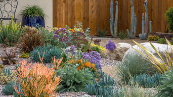Color! All Drought Tolerant!