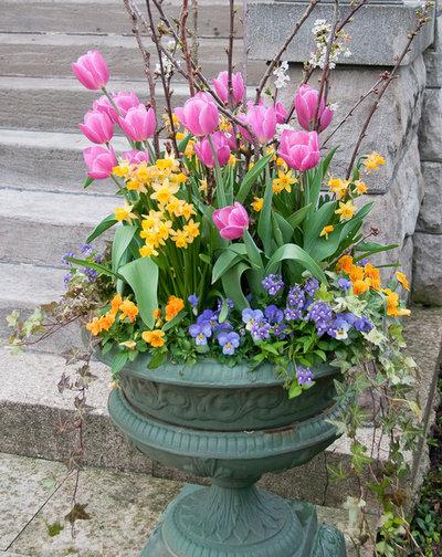 Какие цветы сажают в кашпо на улице