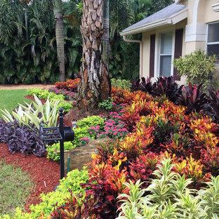 Idéer för mellanstora tropiska trädgårdar i full sol framför huset, med marksten i betong och en trädgårdsgång
