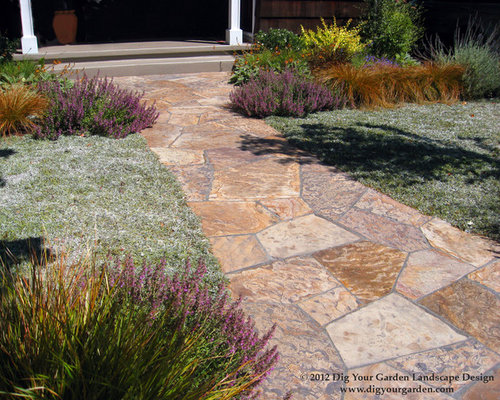 Silver carpet dymondia margaretae carpet vidalondon for Garden design mill valley