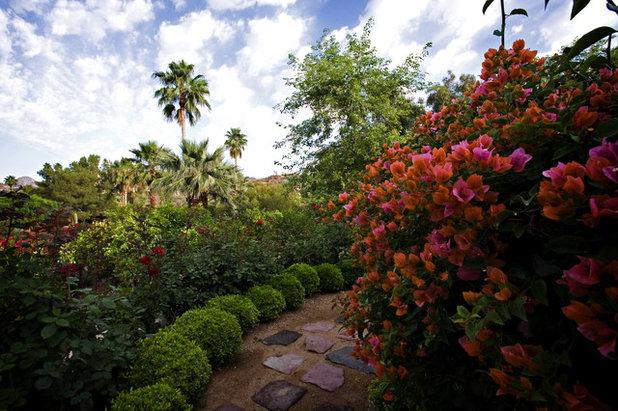 Mediterráneo Jardín by Exteriors By Chad Robert