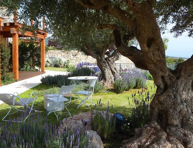 Mediterráneo Jardín by GARDENIA-Sharly & Tanya Illuz