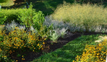 Complete New Planting Design in Towson, MD