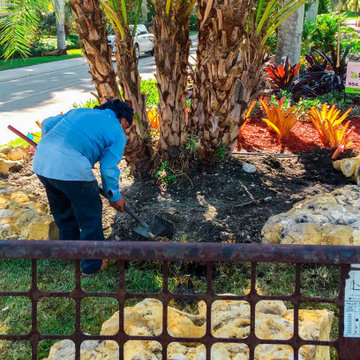 Complete overhaul of median strip landscaping in San Messina Weston Florida.