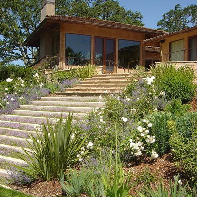 Contemporary Landscape by Elements Landscape Inc