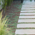 Concrete Walkway And Landscaping Modern Landscape