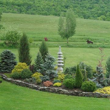 Conifer Garden - Danby