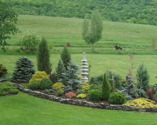 Conifer Garden Ideas mixed evergreen tree screen conifers Conifer Garden