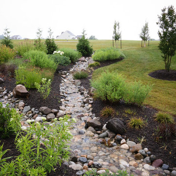 Conservation Meadowscape