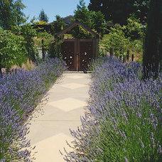 Traditional Landscape by AFLA-Landscape Design