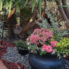 Contemporary Landscape by FOCAL POINT STYLING