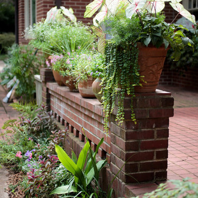 Photo of a small traditional shade courtyard landscaping in Atlanta for summer.