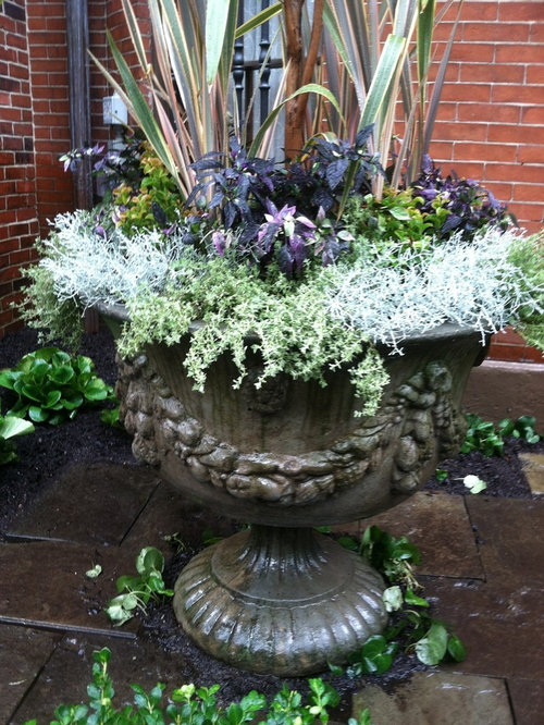 Victorian Courtyard Landscape Ideas Designs Remodels