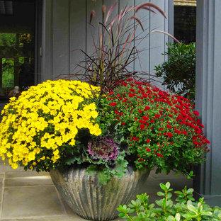 Стильный дизайн: участок и сад в классическом стиле с растениями в контейнерах - последний тренд