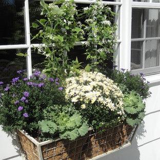 Создайте стильный интерьер: сад в классическом стиле - последний тренд