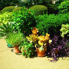 Eclectic Landscape by Highland Landscaping LLC