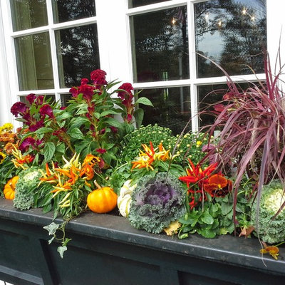 Design ideas for a large traditional full sun front yard formal garden in New York for fall.