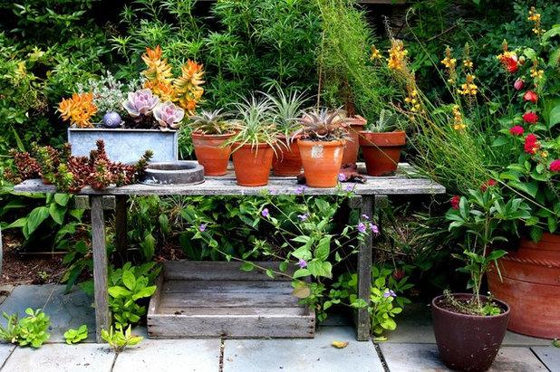 Contemporaneo Giardino by Fine Garden Creations