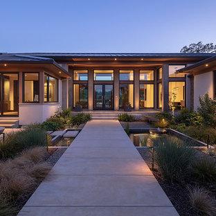 Moderner Garten mit Gartenweg und direkter Sonneneinstrahlung in San Francisco