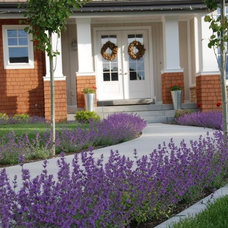 Traditional Landscape by Ag-Trac Enterprises LC