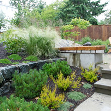 Contemporary Landscape by Greenspace Designs