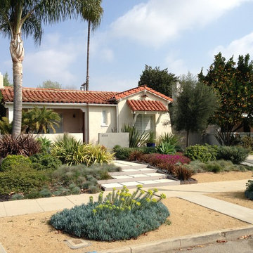 Contemporary Drought Tolerant Entry and Front Yard