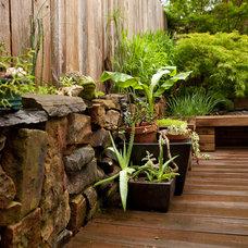 Asian Landscape by Tim Smith Garden Design