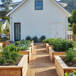 Exemple d'un grand jardin potager arrière nature l'été avec une exposition ensoleillée et du gravier.