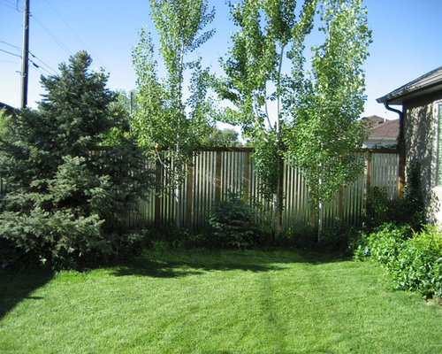 Corrugated Metal Fence Design Ideas Amp Remodel Pictures Houzz