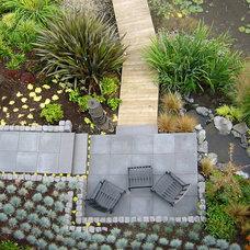 Contemporary Landscape by Cambium Inc.