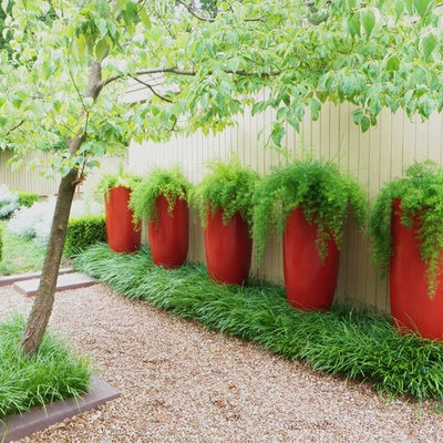 This is an example of a contemporary backyard gravel landscaping in Little Rock.