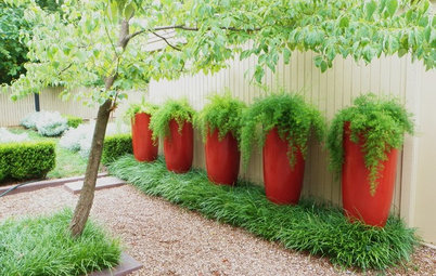 Try This Shortcut to Garden Color Where You Need It