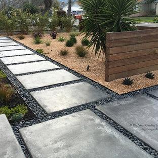 Idee per un giardino xeriscape contemporaneo esposto in pieno sole di medie dimensioni e davanti casa in autunno con pavimentazioni in cemento e un ingresso o sentiero