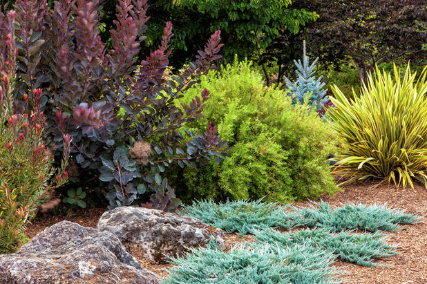 Contemporary Landscape by Form and Foliage