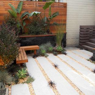 Immagine di un piccolo giardino xeriscape minimal dietro casa con pavimentazioni in cemento