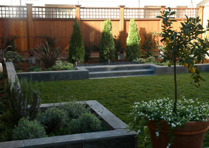 contemporary landscape by Kate Michels Landscape Design