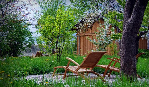 Contemporary Garden Contemporary Landscape