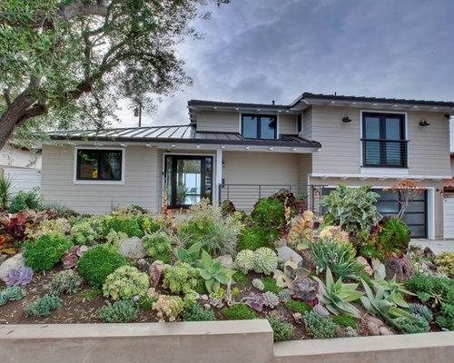 Succulent Front Yard Ideas Home Design Ideas Pictures
