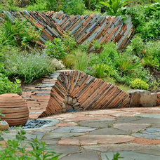 Contemporary Landscape by Mariposa Gardening & Design, LLC
