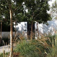 contemporary landscape by MTLA- Mark Tessier Landscape Architecture