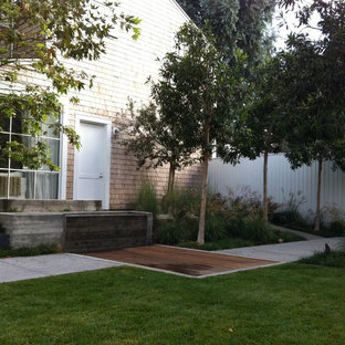 This is an example of a contemporary backyard landscaping in Los Angeles.