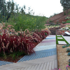 Contemporary Landscape by Singing Gardens