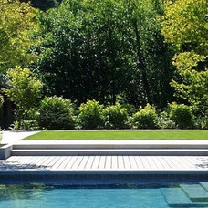 Contemporary Landscape by THOMAS KYLE:  Landscape Designer