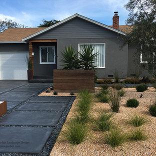 サンフランシスコの中サイズの、夏のコンテンポラリースタイルのおしゃれな前庭 (私道、庭への小道、日向、コンクリート敷き) の写真