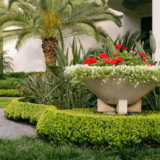 Tropical Landscape by Exterior Worlds Landscaping & Design
