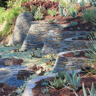 Photo of a contemporary full sun hillside landscaping in San Francisco.