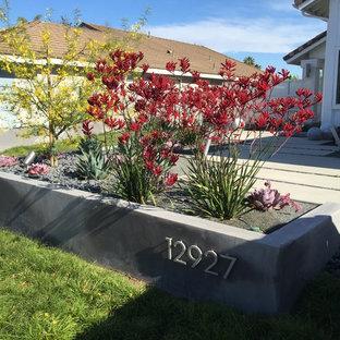 Design ideas for a large contemporary drought-tolerant and partial sun backyard concrete paver garden path in Los Angeles.