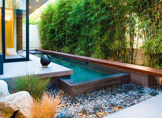 Contemporary Garden by Central Meridian Photography